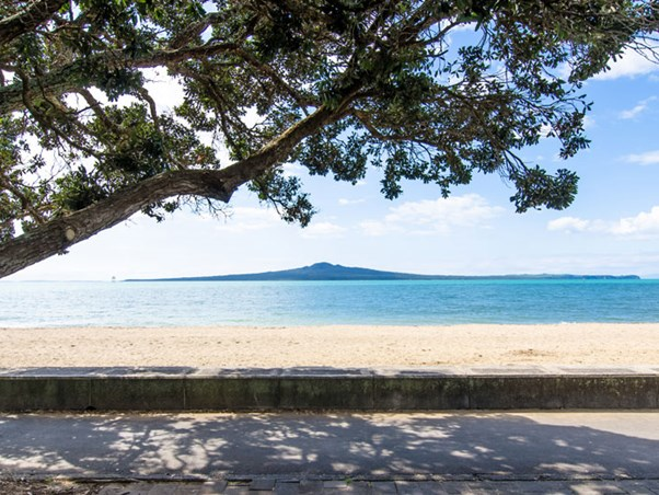 View of Rangitoto across water with pohutukawa tree overhanging on left.